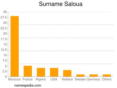 Surname Saloua