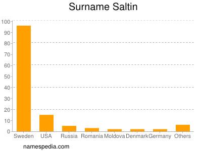 Surname Saltin