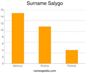 Surname Salygo