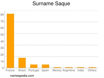 Surname Saque
