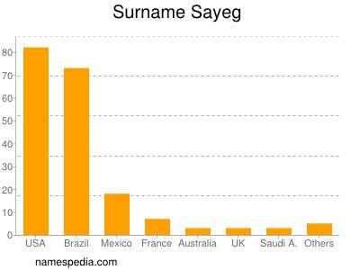 Surname Sayeg