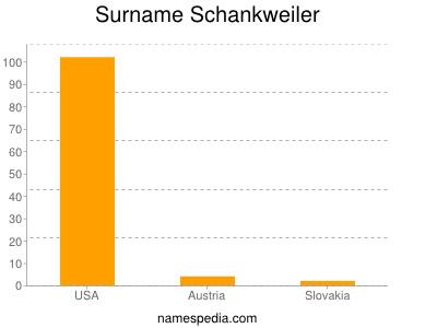Surname Schankweiler