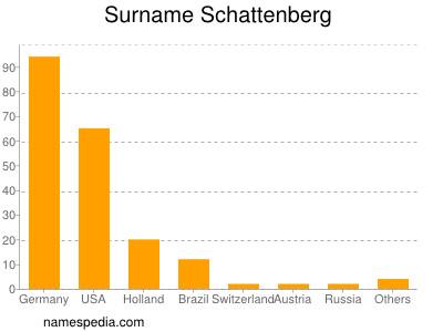 Surname Schattenberg