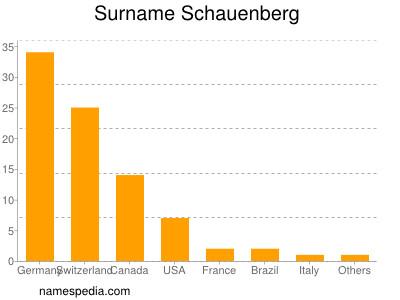 Surname Schauenberg