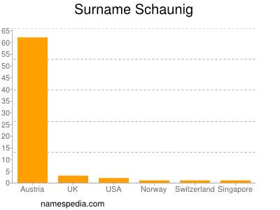 Surname Schaunig