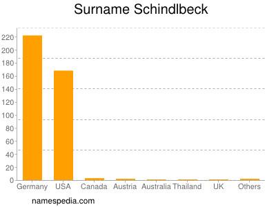 Surname Schindlbeck