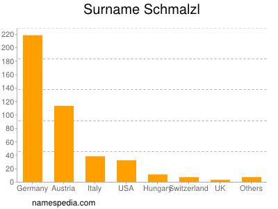Surname Schmalzl