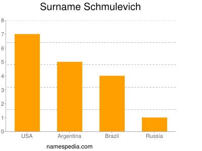 Surname Schmulevich
