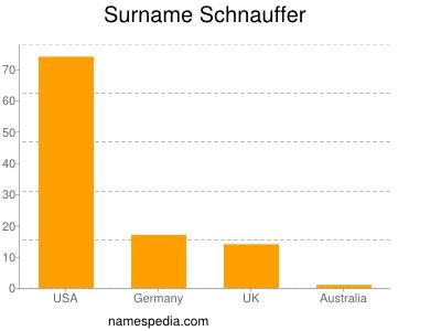 Surname Schnauffer