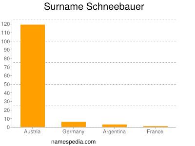 Surname Schneebauer