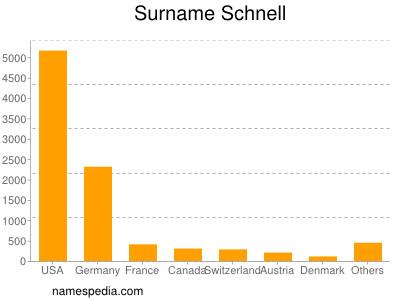 Surname Schnell