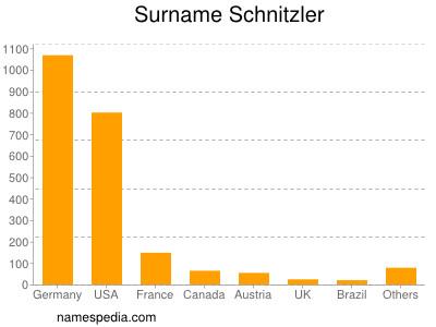 Surname Schnitzler