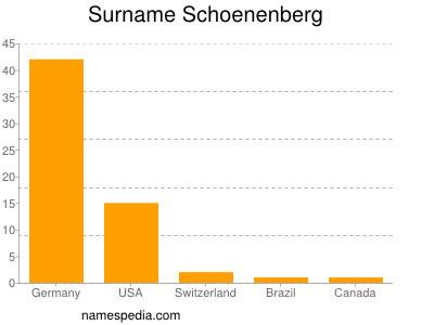 Surname Schoenenberg