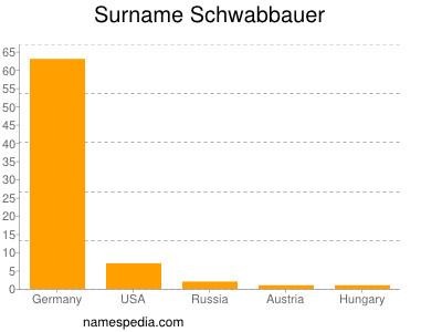 Surname Schwabbauer