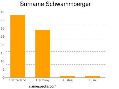 Surname Schwammberger