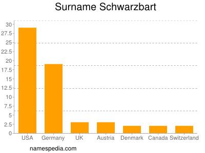 Surname Schwarzbart