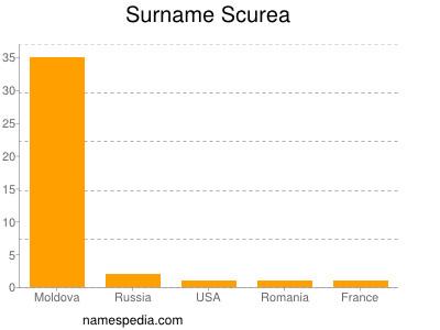 Surname Scurea