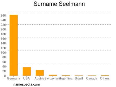 Surname Seelmann