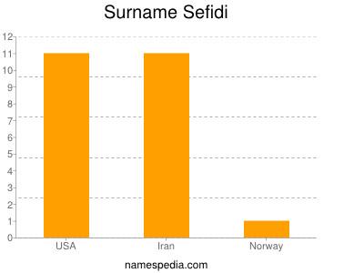 Surname Sefidi