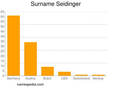 Surname Seidinger