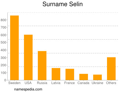 Surname Selin