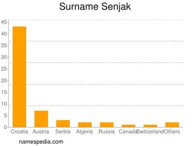 Familiennamen Senjak