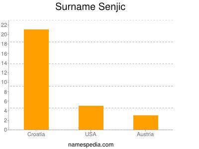Surname Senjic