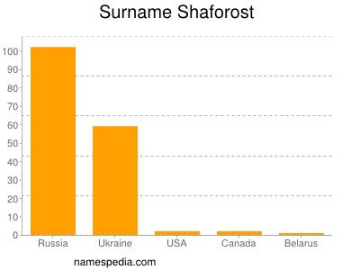 Surname Shaforost