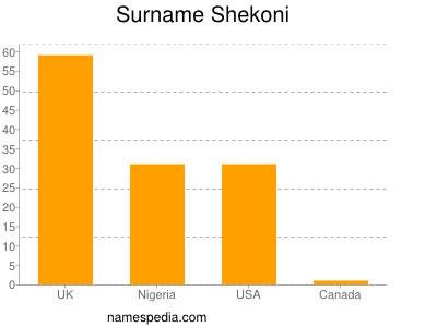 Surname Shekoni