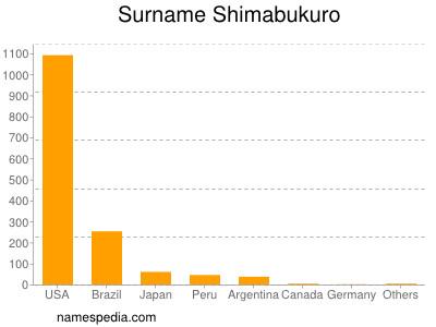 Surname Shimabukuro