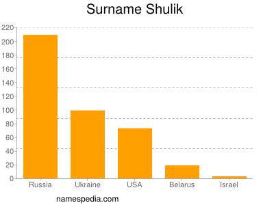 Surname Shulik