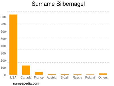 Surname Silbernagel