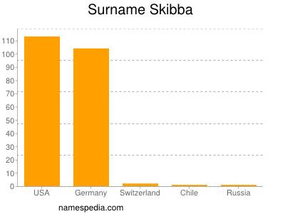 Surname Skibba