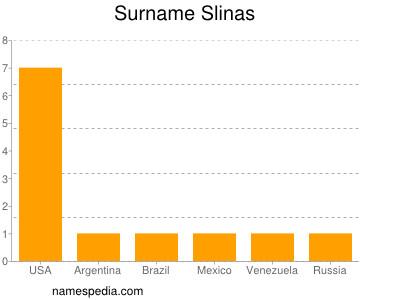 Surname Slinas