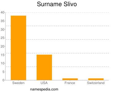 Surname Slivo