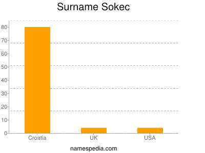 Surname Sokec
