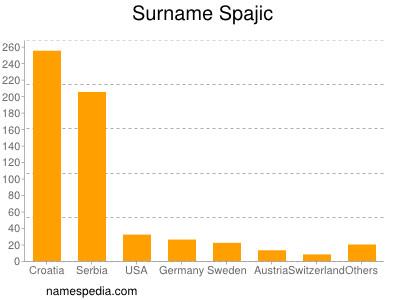 Surname Spajic