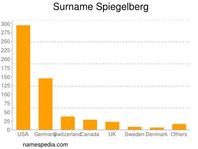 Surname Spiegelberg