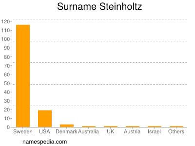 Surname Steinholtz