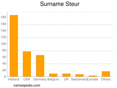 Surname Steur