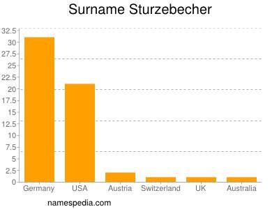Surname Sturzebecher