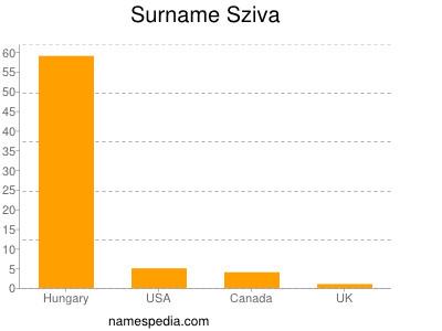 Surname Sziva