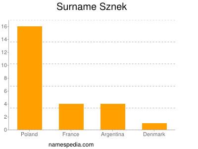 Surname Sznek