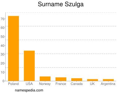 Surname Szulga