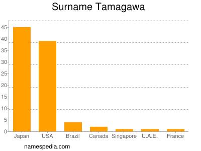 Surname Tamagawa