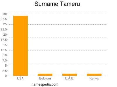 Surname Tameru