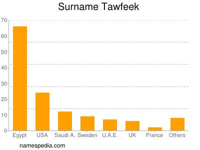 Surname Tawfeek