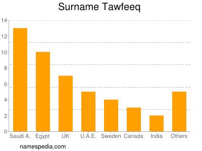 Surname Tawfeeq