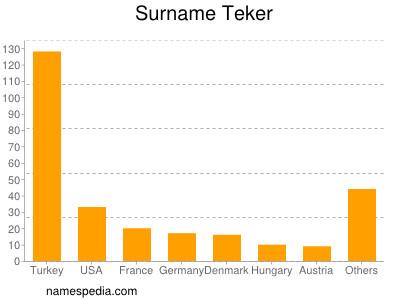 Surname Teker