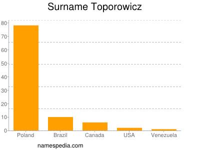 Surname Toporowicz